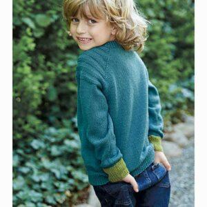 Viser drenge raglan sweater bagfra