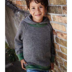 Drenge sweater med hætte