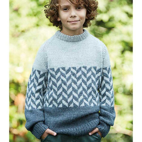Drengesweater med mønster bort